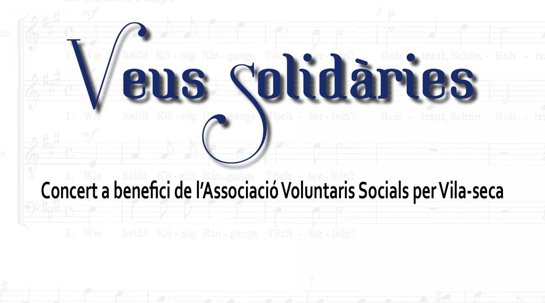 Veus Solidàries